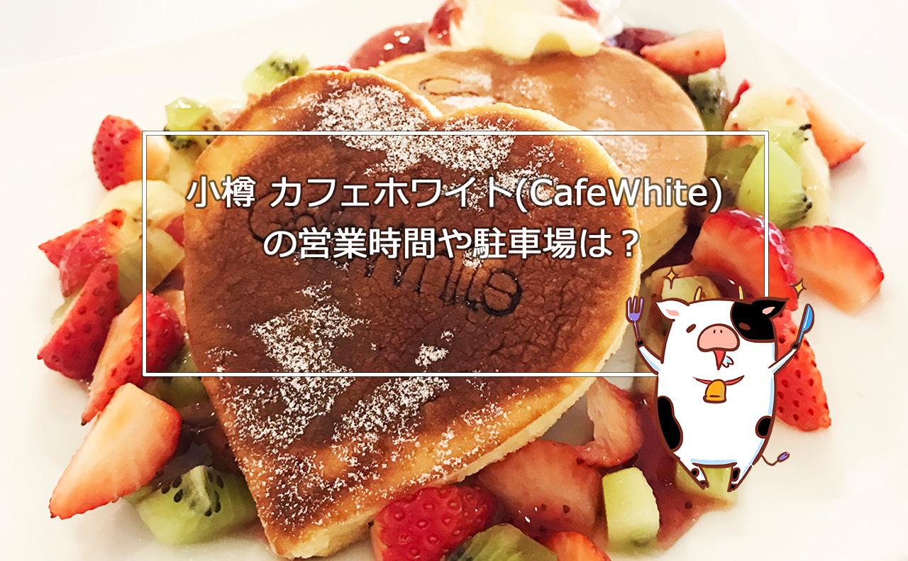 【小樽カフェ】カフェホワイト(CafeWhite 旧岡川薬局)の営業時間や駐車場は?