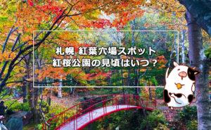 札幌 紅葉穴場スポット!紅桜公園の見頃は?アクセスや駐車場情報も