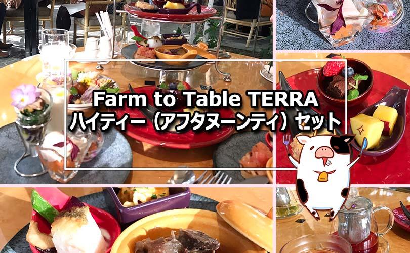 Farm to Table TERRA ハイティー(アフタヌーンティー)はコスパ最高