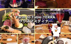 Farm to Table TERRA クリスマスディナーの予約は低予算でも演出最高