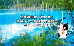 北海道白金「青い池」美瑛ブルーが綺麗な時間とライトアップ情報