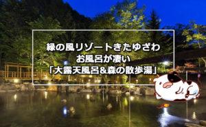 緑の風リゾートきたゆざわ お風呂が凄い「大露天風呂&森の散歩湯」